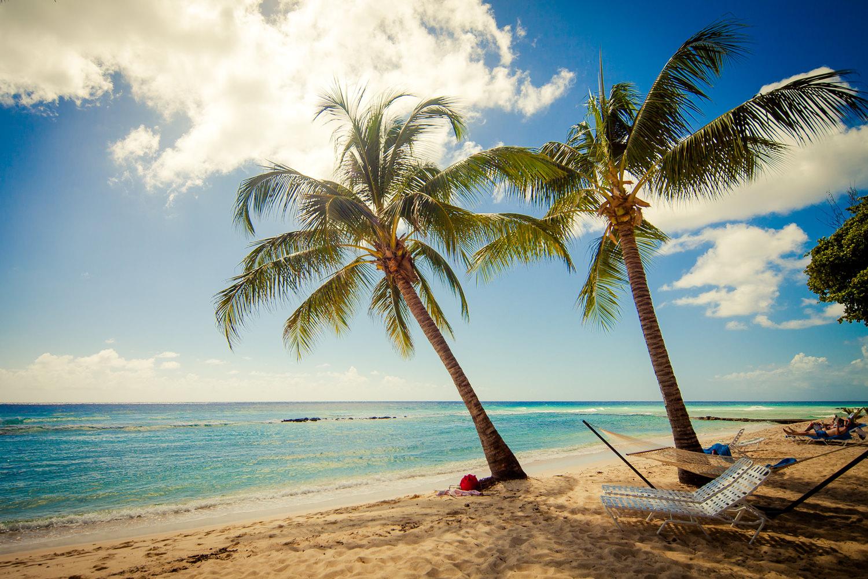 sugar bay barbados hammock under twin palms sugar bay barbados   escape marketing  rh   escapemarketing